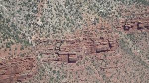 Canyon 239